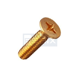 Brass Csk Head Screw